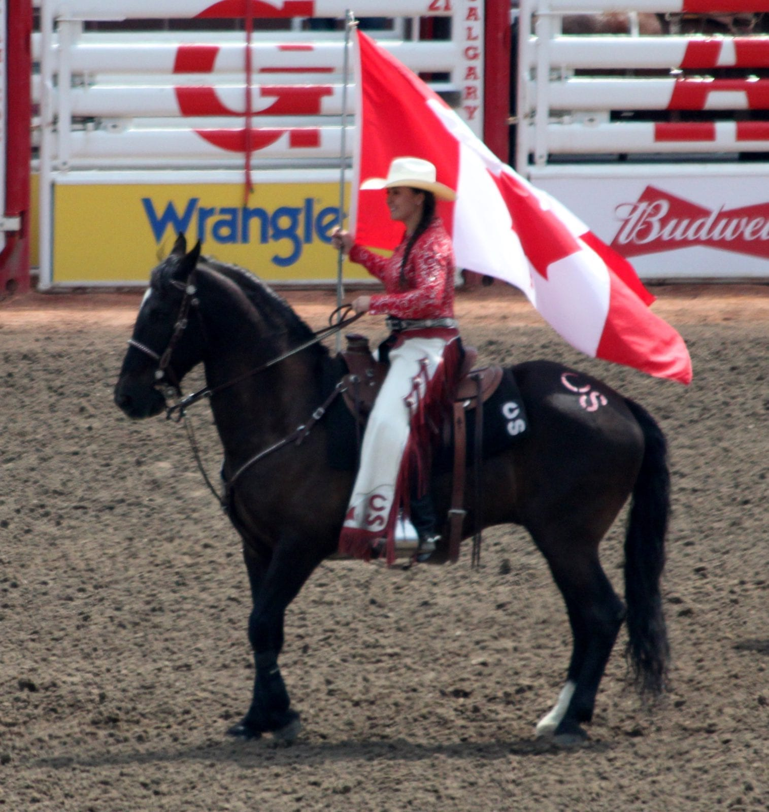 Calgary Stampede Amp Rocky Mountaineer Snaffle Travel